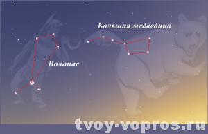Созвездия Волопас и Большая медведица