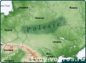 Географическое расположение низменности Полесье